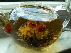 flowering tea 4 500.jpg