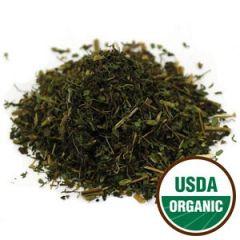 Stevia leaf.jpg